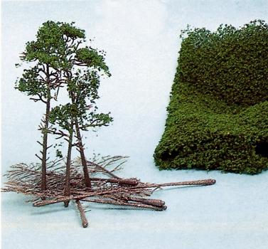 Heki - Bausatz 10 Kiefern 10-16 cm + HEKI flor
